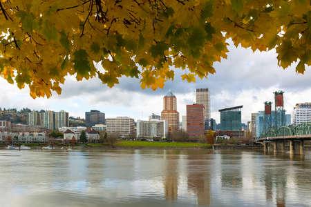 Portland Oregon downtown waterfront city skyline from under maple tree in fall season