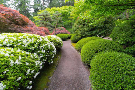 Strolling garden path with trees and shrubs in Japanese Garden during Spring season Stock Photo