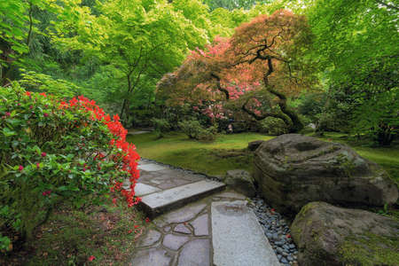 Incroyable Stock Photo   Stone Path With Rocks Maple Trees Plants Shrubs In Japanese  Garden During Spring Season