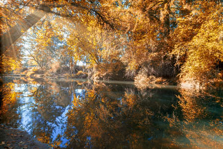 Reflection on Crabtree Creek in Linn County Oregon during fall season