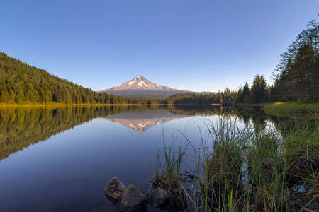 Reflection of Mount Hood on Trillium Lake by grass and rocks on a clear blue sky day
