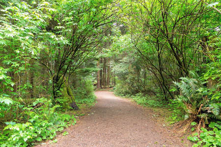 Hiking trail at Fort Clatsop along Lewis and Clark River in Oregon Stock Photo
