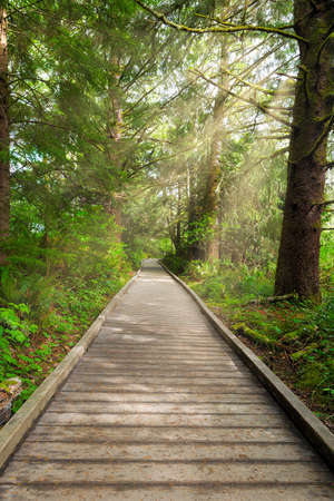 Boardwalk along hiking trail by Lewis and Clark River at Fort Clatsop Stock Photo
