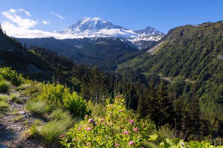 Scenic view of Mount Rainierin National Park Washington State on a sunny day