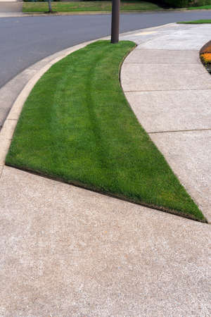 Parking Strip with mowed manicured green grass lawn in suburban neighborhood Stock Photo