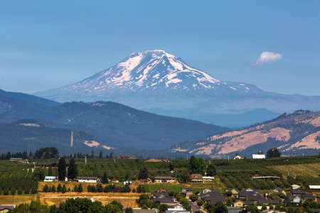 Mount Adams over Hood River Valley Fruit Orchards in Oregon on a clear blue sky sunny day Stock Photo