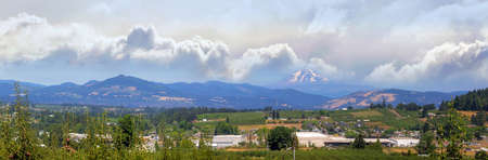 Fruit orchard farms in the valley of Hood River Oregon in summer Panorama