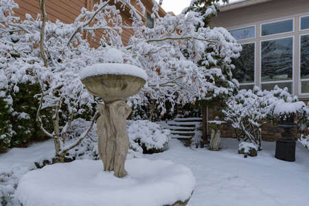 House garden front yard covered in snow on a cold winter day in residential suburban neighborhood