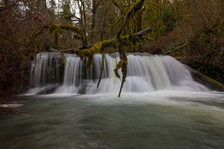 McDowell Creek Falls in Oregon County Park during winter closeup Stock Photo
