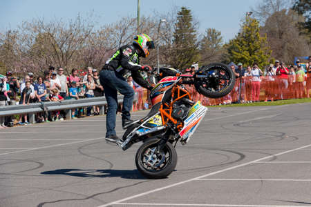 VICTORIAAUSTRALIA - SEPTEMBER 2015: Stunt motorcycle rider performing at a local car show on the 13 September 2015 in Corowa.