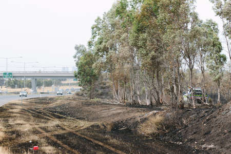 scrub grass: EPPING, AUSTRALIA - 20 DECEMBER 2015: A day after fires swept through Epping in Melbourne, CFA Fire Crews patrol the area for spot fires as Melbourne Suffered its hottest day in December hitting 45 degrees C. Editorial