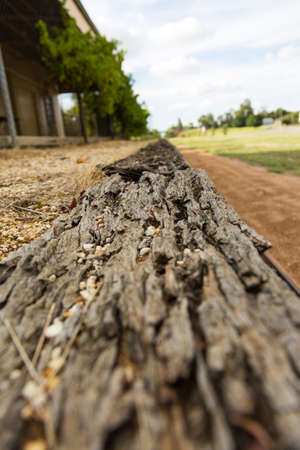 disused: closeup of rotting timber at a disused railway station.
