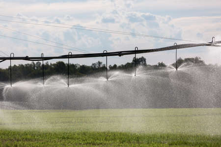 irrigation field: A Lateral Move Irrigation System, sometimes called a Linear Move, Wheelmove or Side Roll System, irrigating crops in Australia. These systems are often 500 meters to 1000 meters long.