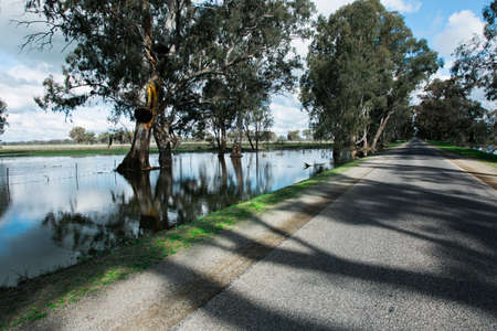 Flooding in the North West region of Victoria, Australia. Recent rain has been so heavy that there is standing water up to 1 metre deep along the side of rural roads. Editorial