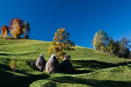 Autumn landscape in an alpine village (Romania) Stock Photo