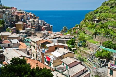 Manarola village, Cinque Terre, Liguria in Italy photo