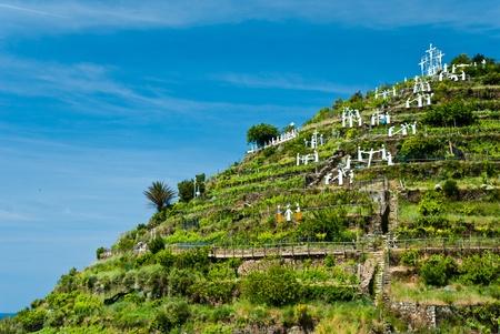 Landscape in Manarola village, Cinque Terre, Liguria in Italy Stock Photo - 10961148