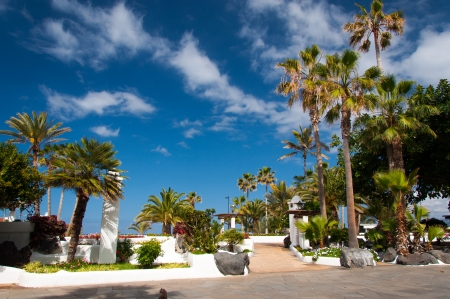 Promenade with palm tree garden in Puerto de la Cruz near Lago Martianez, Tenerife, Canary Islands, Spain Stock Photo