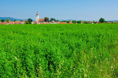 Beautifull green view into a Transylvanian village,Rotbav, close to Brasov, with it photo