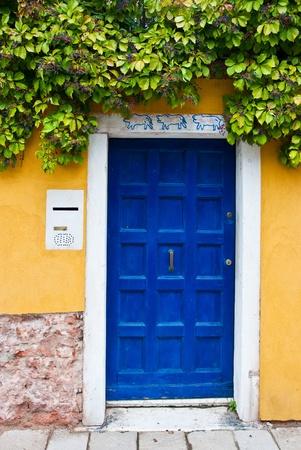 Colorful Venetian house entrance door - architectural detail Reklamní fotografie