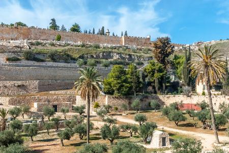 mount of olives: View of old city walls of Jerusalem from Mount olives, Israel