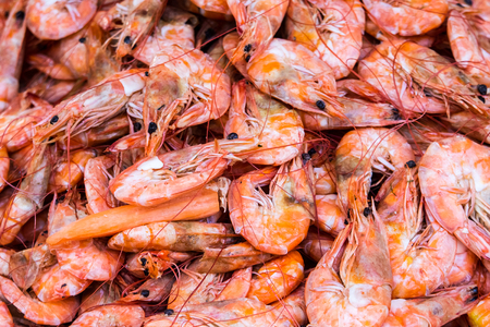 crustaceans: Cooked scrimps, delicious and healthy seafood  Shrimp are crustaceans  just like lobsters and crabs  and they belong to a category of living things called arthropods
