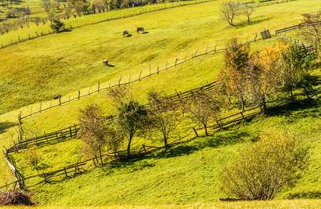 Countryside landscape in a romanian villlage at the food of Piatra Craiului Mountains. photo
