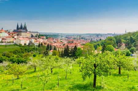 praha: Panoramic view over the Praha with St. Vitus cathedral and Prague Castle, Czech Republic.