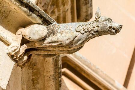 gargouille: D�tail d'une gargouille de pierre gothique d'une maison � Mdina, Malte