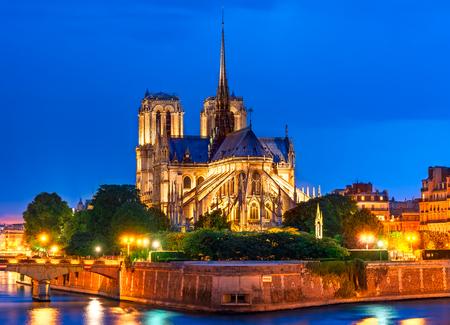 Ile de la Cite, Parijs, Frankrijk: Nacht uitzicht op de Cathédrale Notre Dame de Paris of Onze Lieve Vrouw van Parijs, een prachtige kathedraal en een belangrijk voorbeeld van Franse gotische architectuur, beeldhouwkunst en glas-in-lood.
