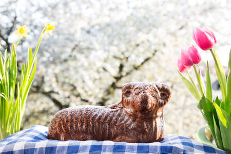 Czech Easter - chocolate easter lamb with spring decoration