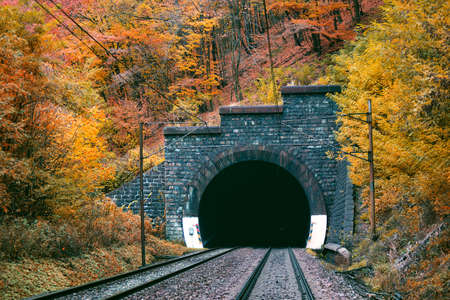 Railway tunnel in autumn forest. Bujanovsky tunel/Bujanov tunnel from Ruzin
