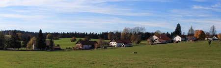 meadow and houses in the countryside