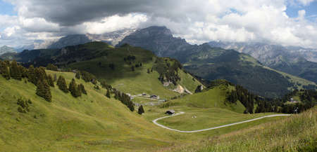 alpine scenery in summer