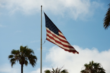 American flag waving near sunset with palm trees in the frame.