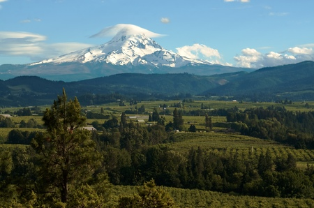 Mount Hood looming over the lush farmlands in the valley below known for their high quality fruit and berries. Stock Photo