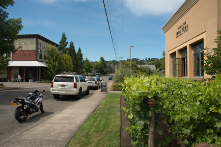 DUNDEE OREGON, AUGUST 15 2017, A winery tasting room with grape vines in front, and across the street, a specialty market in Dundee. Stock Photo - 86465476