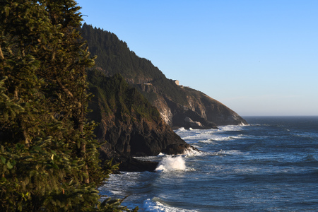 View of a rocky coastline along the Oregon central coast near Heceta Head. Fir trees in the foreground.