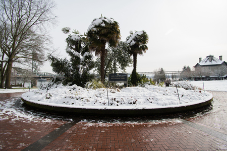 PORTLAND, OREGON, FEBRUARY 21 2018: Tom McCall Waterfront Park entrance sign with palm trees covered in snow in the morning.