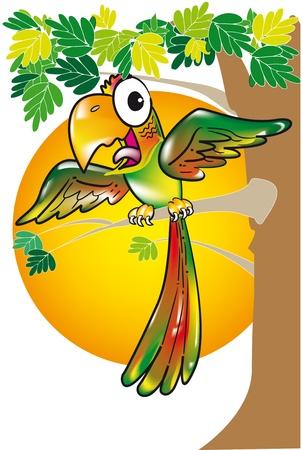 macaw a cartoon in a tree