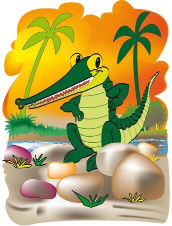 cayman: cartoon of a needle to cayman riverside sunset Illustration