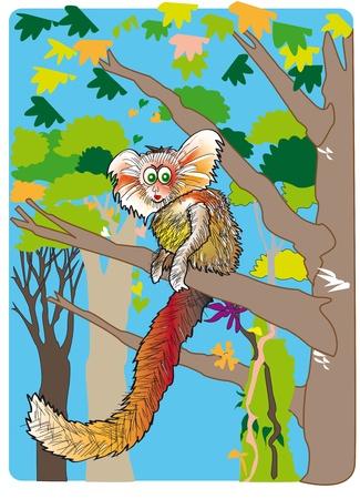 cartoon of a marmoset Ilustração