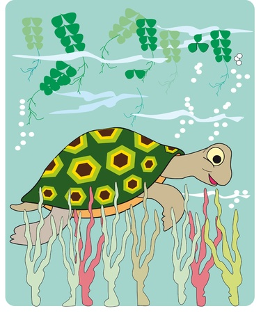 cartoon of a sea turtle in water rl