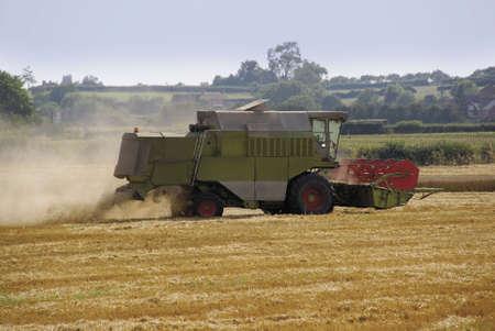 are combined: combined harvester cornfield harvesting bidford on avon warwickshire midlands england