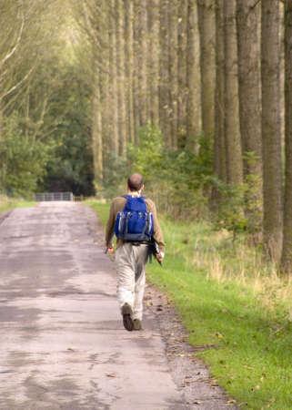 streifzug: junger Mann zu Fu� entlang Landstra�e zwischen Allee der B�ume