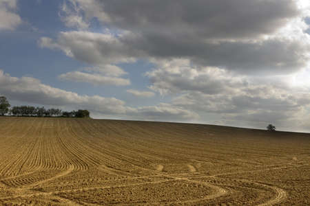 ploughed: farmland earth  sky skies fallow ploughed field