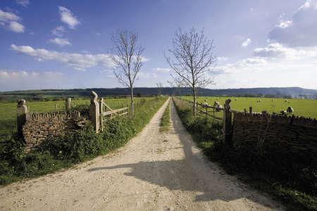cotswold: Vista dal sentiero per pedoni di senso di Cotswold il Cotswolds Gloucestershire le Midlands Inghilterra Archivio Fotografico