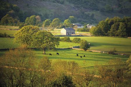 derbyshire: england derbyshire peak district national park longdtone moor farmland