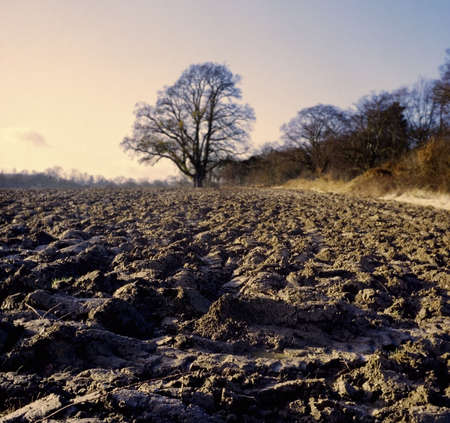 ploughed: farmland in winter earth soil ploughed fertile mud muddy Stock Photo