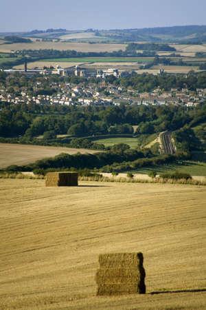 dorset: dorchester farmland dorset england